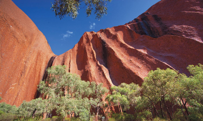 Kakadu Katherine Amp Litchfield Adventure Outback Tour